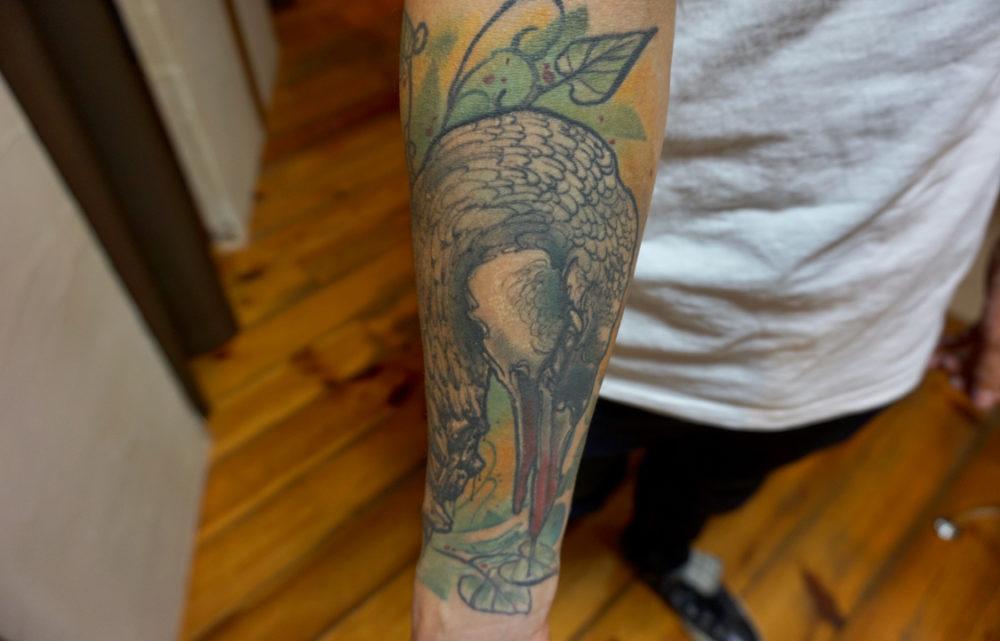 白鳥のタトゥー